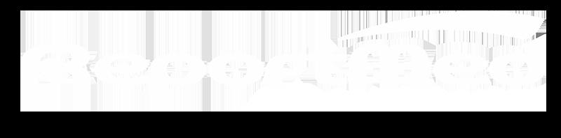 reportmed logo ecocardiolight